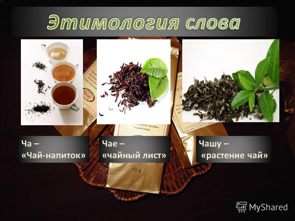 Ча – «Чай-напиток» Чае – «чайный лист» Чашу – «растение чай»