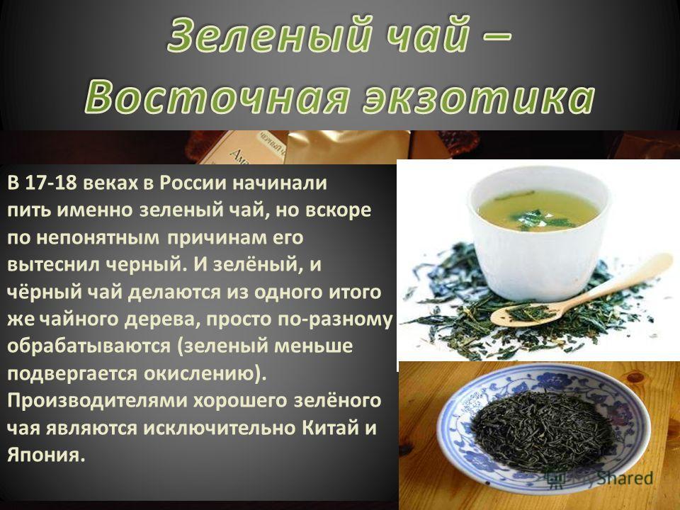 В 17-18 веках в России начинали пить именно зеленый чай, но вскоре по непонятным причинам его вытеснил черный. И зелёный, и чёрный чай делаются из одного итого же чайного дерева, просто по-разному обрабатываются (зеленый меньше подвергается окислению