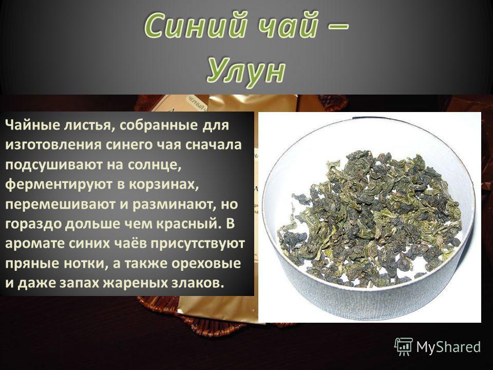 Чайные листья, собранные для изготовления синего чая сначала подсушивают на солнце, ферментируют в корзинах, перемешивают и разминают, но гораздо дольше чем красный. В аромате синих чаёв присутствуют пряные нотки, а также ореховые и даже запах жарены
