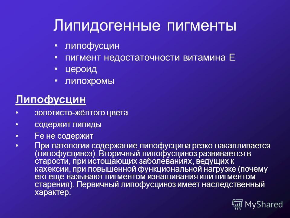 Липофусцин фото