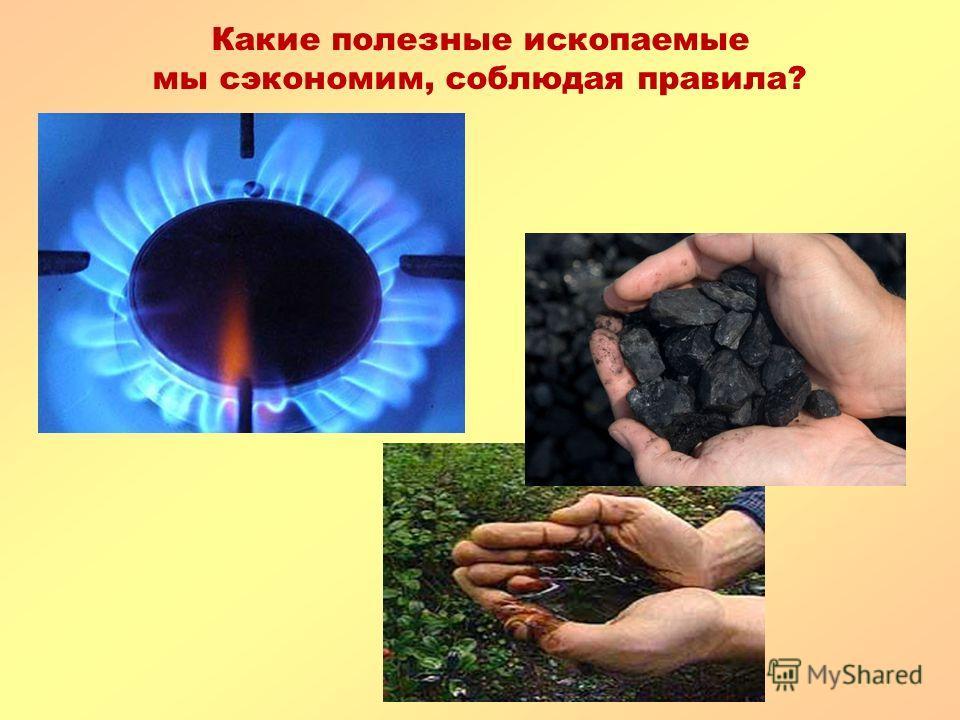 Какие полезные ископаемые мы сэкономим, соблюдая правила? 1.Уходя, выключайте газовую плиту! 2. Берегите тепло!