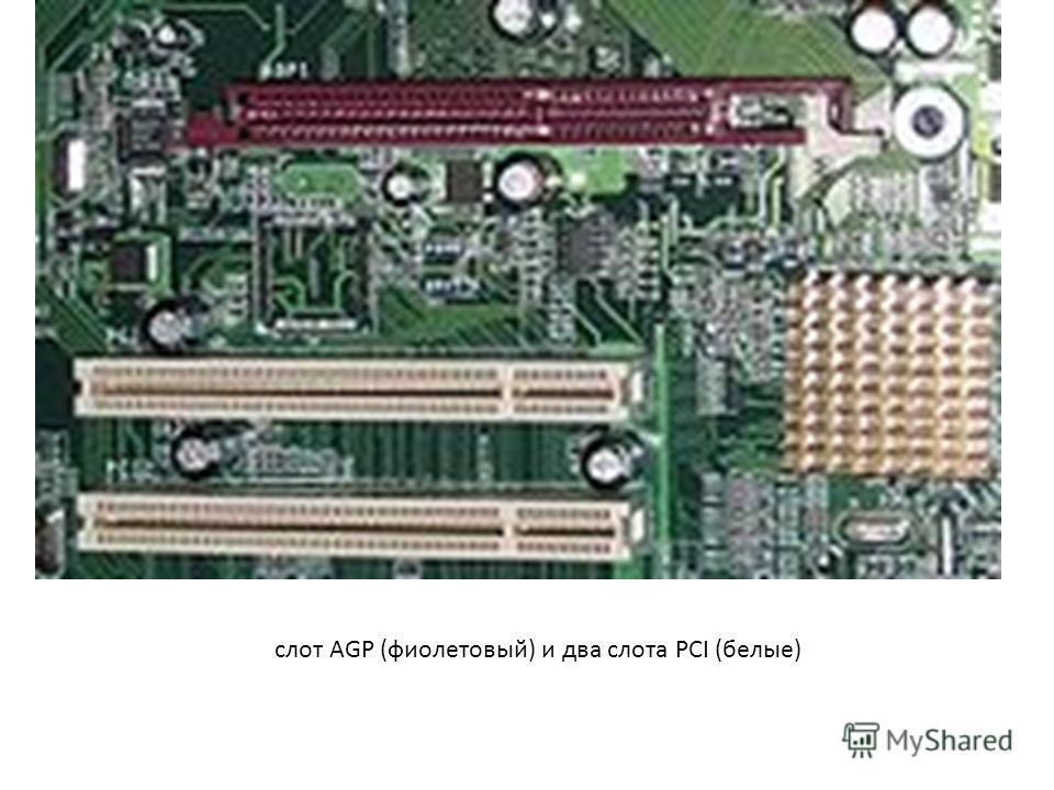 слот AGP (фиолетовый) и два слота PCI (белые)