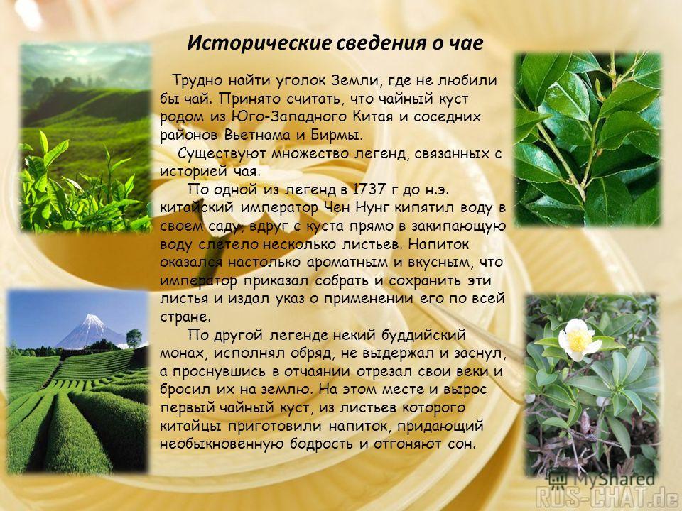 Исторические сведения о чае Трудно найти уголок Земли, где не любили бы чай. Принято считать, что чайный куст родом из Юго-Западного Китая и соседних районов Вьетнама и Бирмы. Существуют множество легенд, связанных с историей чая. По одной из легенд