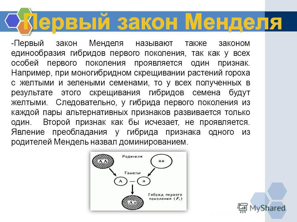 -Первый закон Менделя называют также законом единообразия гибридов первого поколения, так как у всех особей первого поколения проявляется один признак. Например, при моногибридном скрещивании растений гороха с желтыми и зелеными семенами, то у всех п
