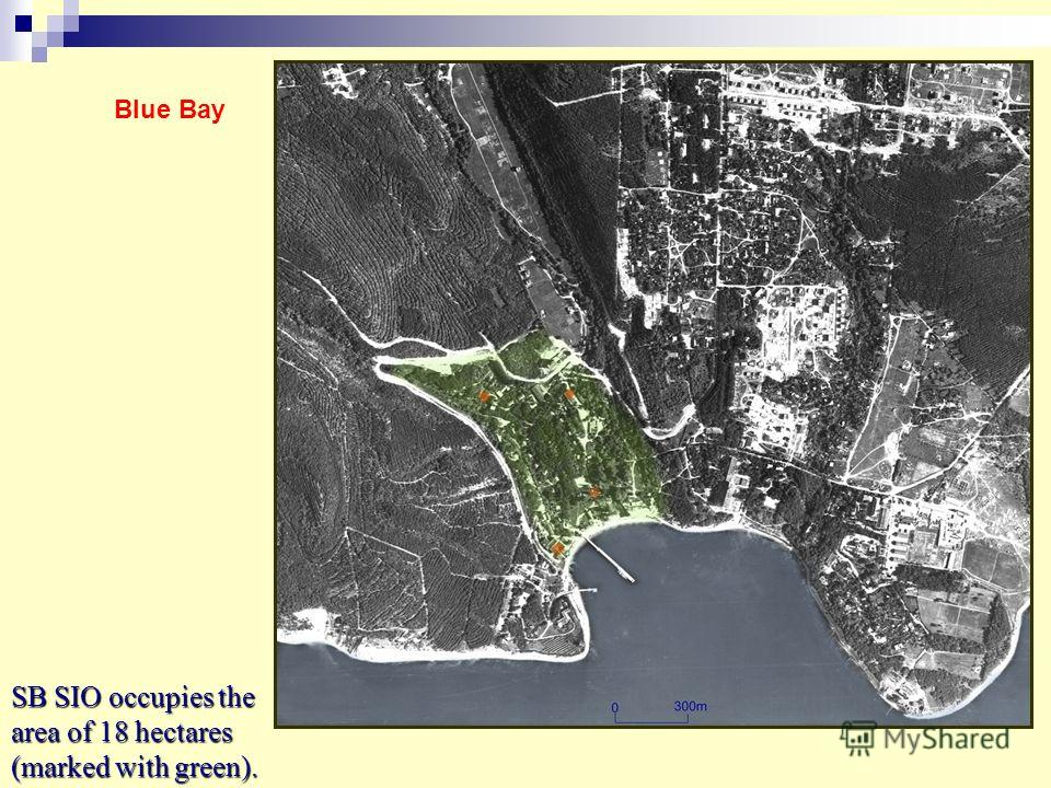 SB SIO occupies the area of 18 hectares (marked with green). Blue Bay