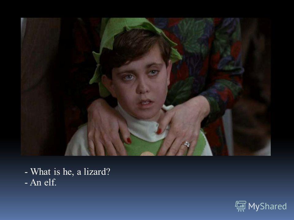- What is he, a lizard? - An elf.