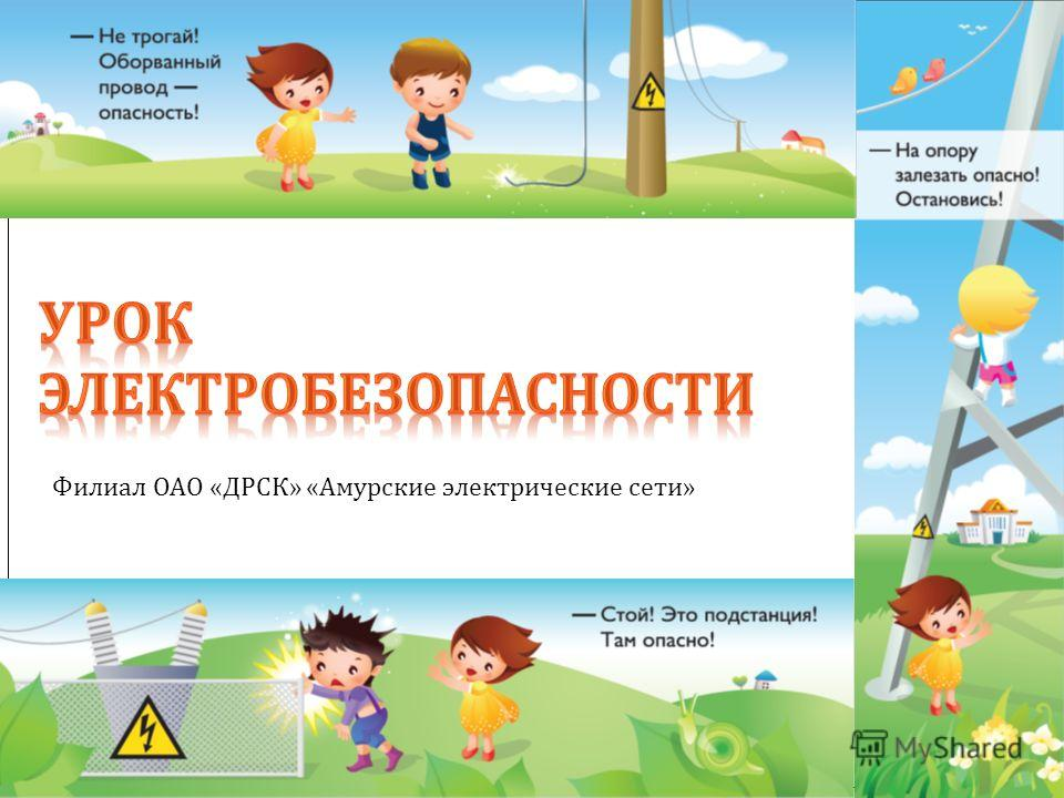 Филиал ОАО «ДРСК» «Амурские электрические сети»