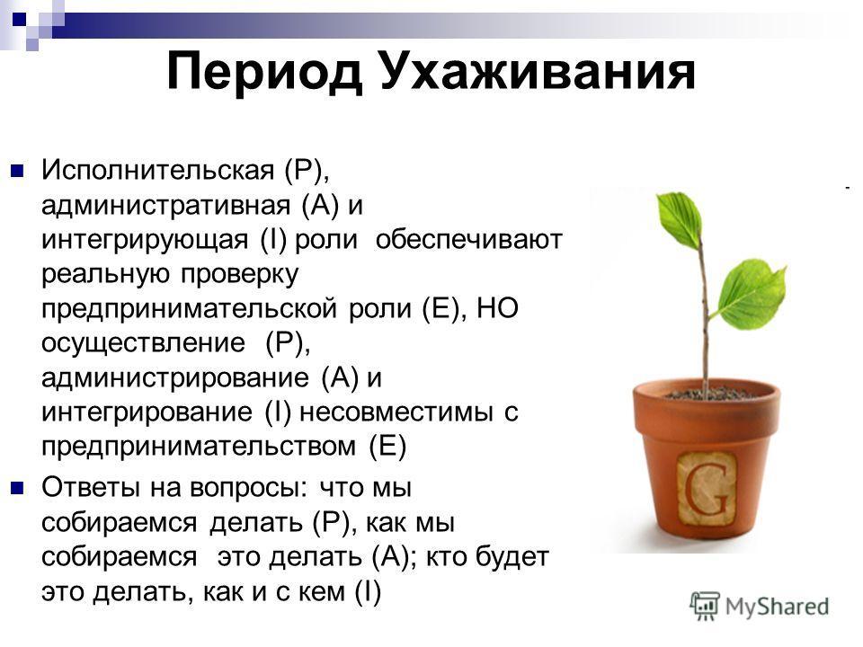 Исполнительская (Р), административная (А) и интегрирующая (I) роли обеспечивают реальную проверку предпринимательской роли (Е), НО осуществление (Р), администрирование (А) и интегрирование (I) несовместимы с предпринимательством (Е) Ответы на вопросы