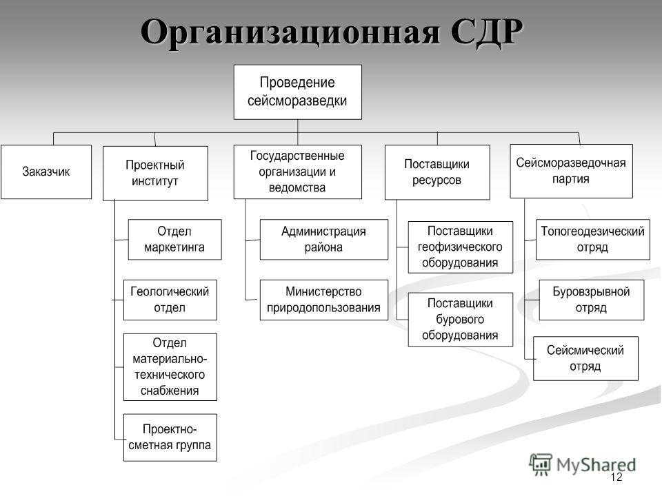 12 Организационная СДР
