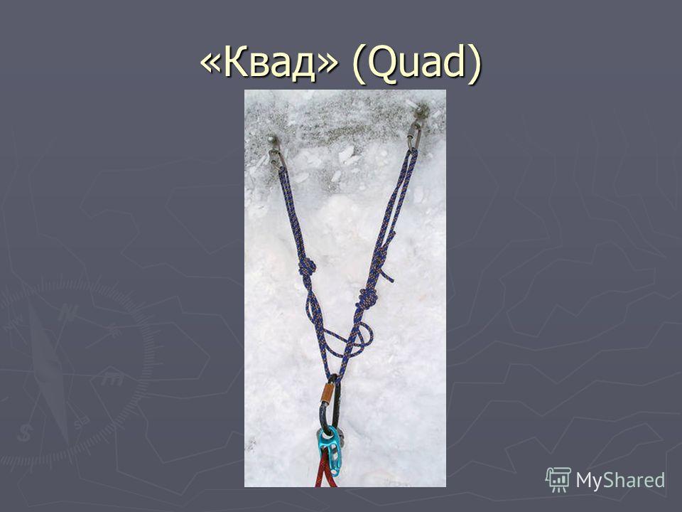 «Квад» (Quad)
