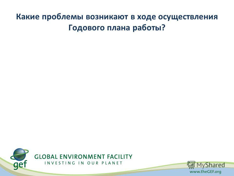 Какие проблемы возникают в ходе осуществления Годового плана работы?