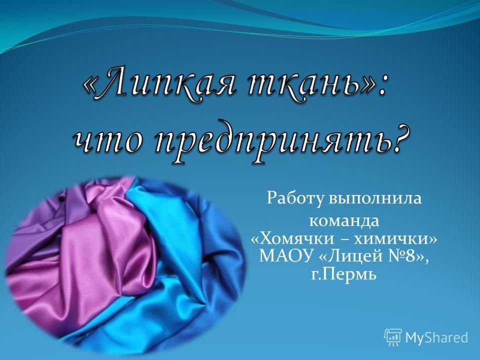 Работу выполнила команда «Хомячки – химички» МАОУ «Лицей 8», г.Пермь