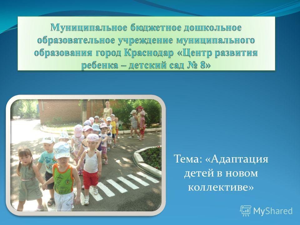 Тема: «Адаптация детей в новом коллективе»