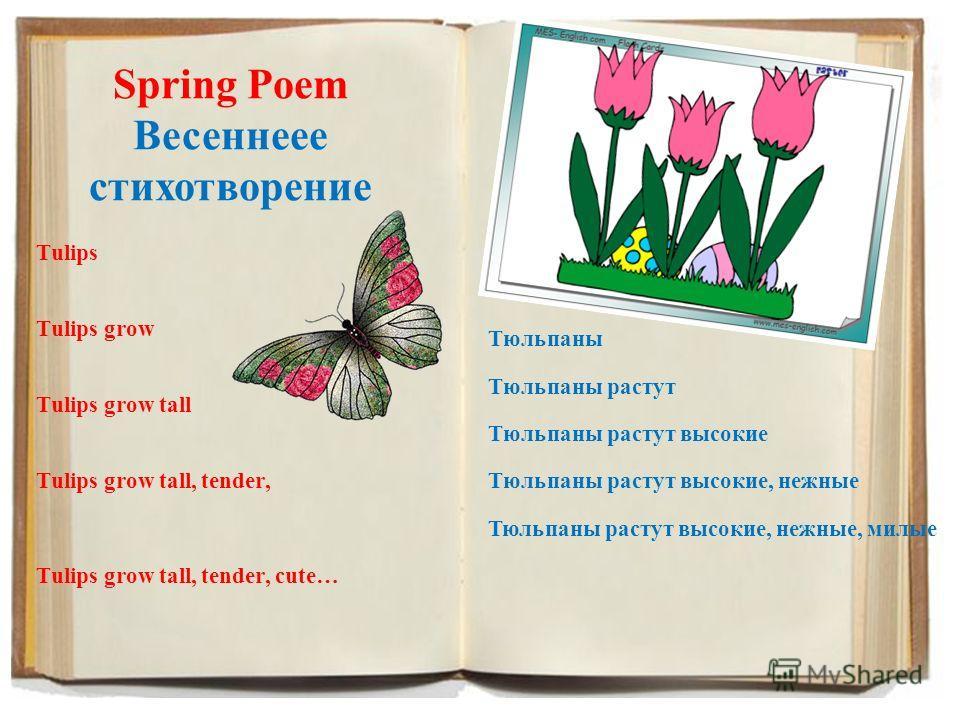 Spring Poem Весеннеее стихотворение Tulips Tulips grow Tulips grow tall Tulips grow tall, tender, Tulips grow tall, tender, cute… Тюльпаны Тюльпаны растут Тюльпаны растут высокие Тюльпаны растут высокие, нежные Тюльпаны растут высокие, нежные, милые