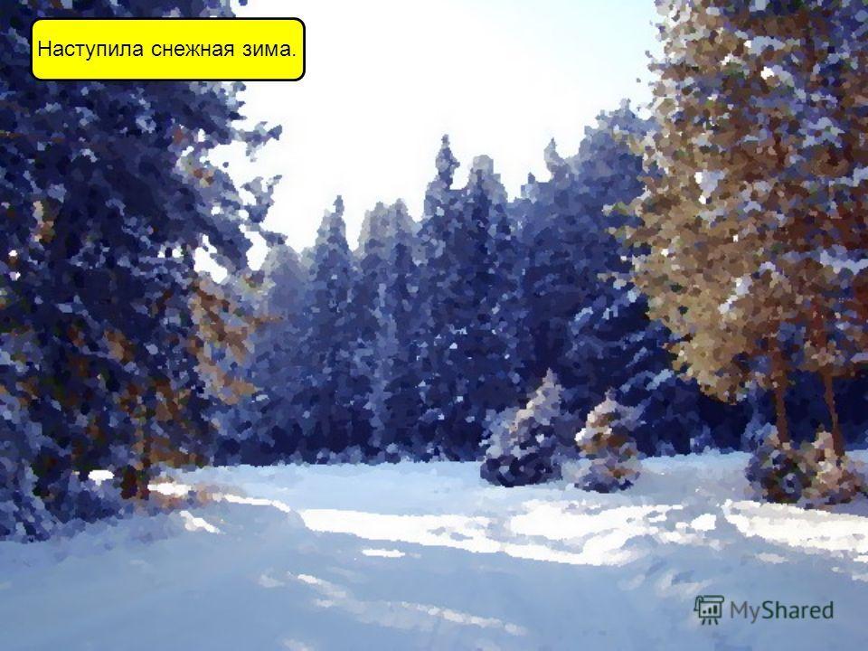 Наступила снежная зима.