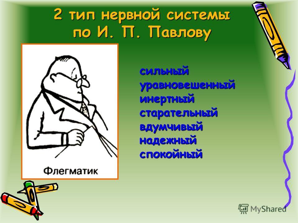 2 тип нервной системы по И. П. Павлову сильныйуравновешенныйинертныйстарательныйвдумчивыйнадежныйспокойный