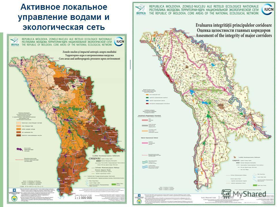 Активное локальное управление водами и экологическая сеть