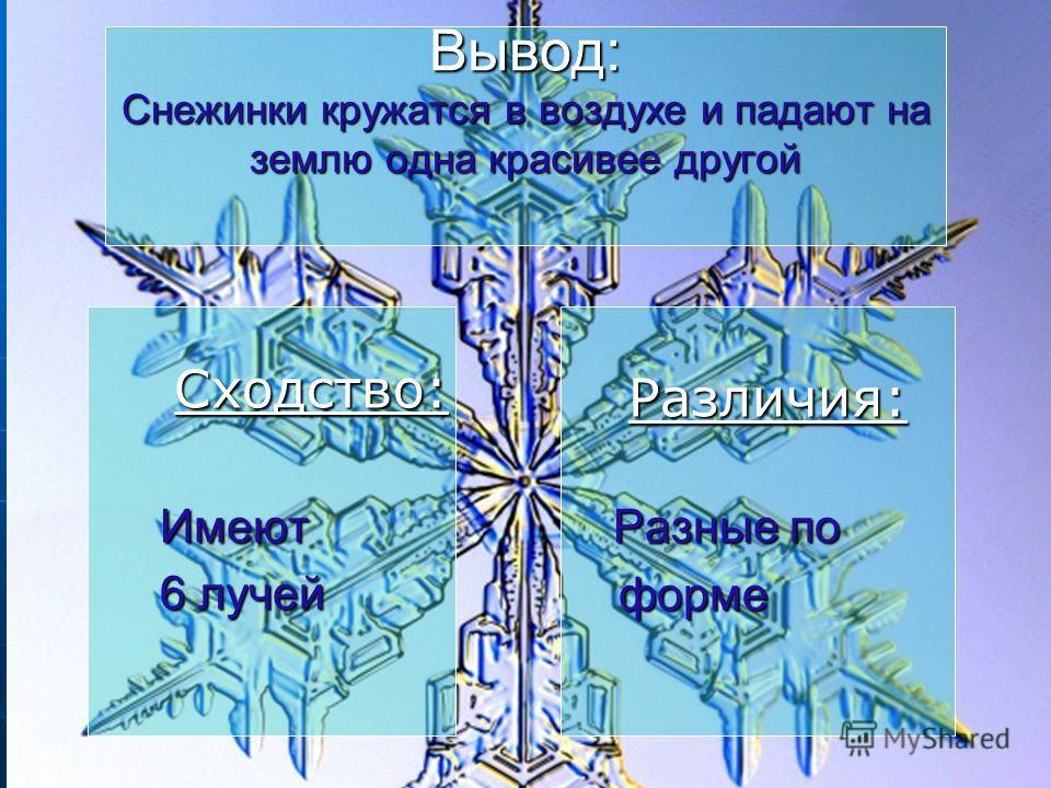 Вывод: Снежинки кружатся в воздухе и падают на землю одна красивее другой Сходство: Сходство:Имеют 6 лучей 6 лучей Различия: Различия: Разные по форме форме