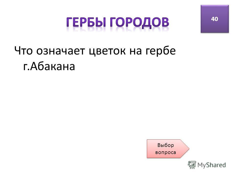 Что означает цветок на гербе г.Абакана 40 Выбор вопроса Выбор вопроса