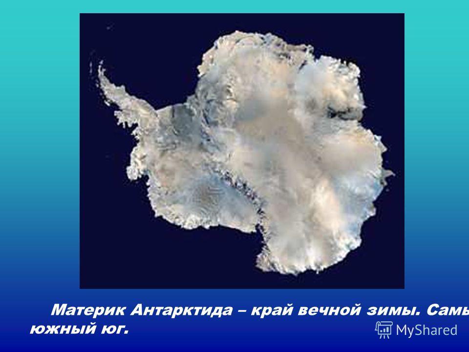 Материк Антарктида – край вечной зимы. Самый южный юг. Материк антарктида – край вечной зимы. Самый южный юг.