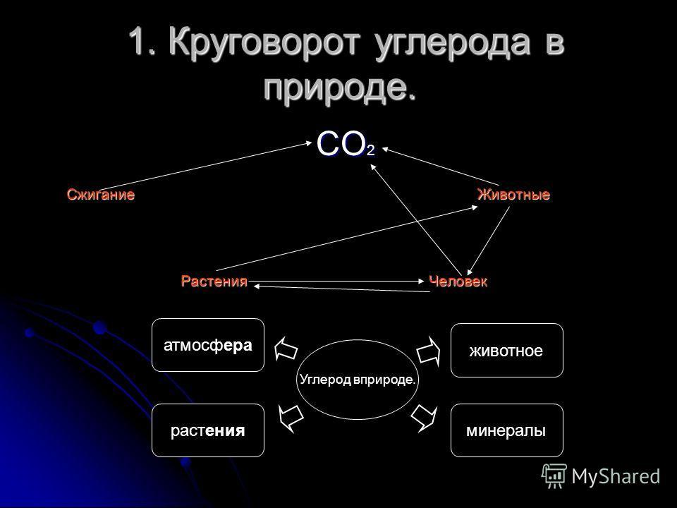 1. Круговорот углерода в природе. 1. Круговорот углерода в природе. СО 2 СО 2 Сжигание Животные Сжигание Животные Растения Человек Растения Человек Углерод вприроде. животное минералы атмосфера растения
