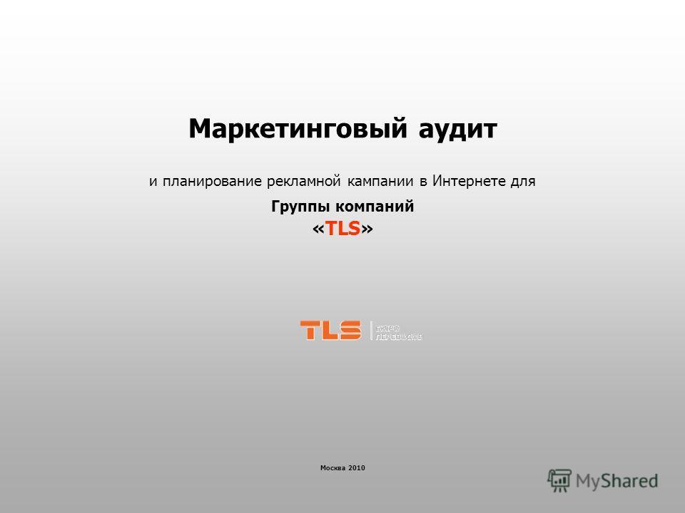 Маркетинговый аудит и планирование рекламной кампании в Интернете для Группы компаний «TLS» Москва 2010