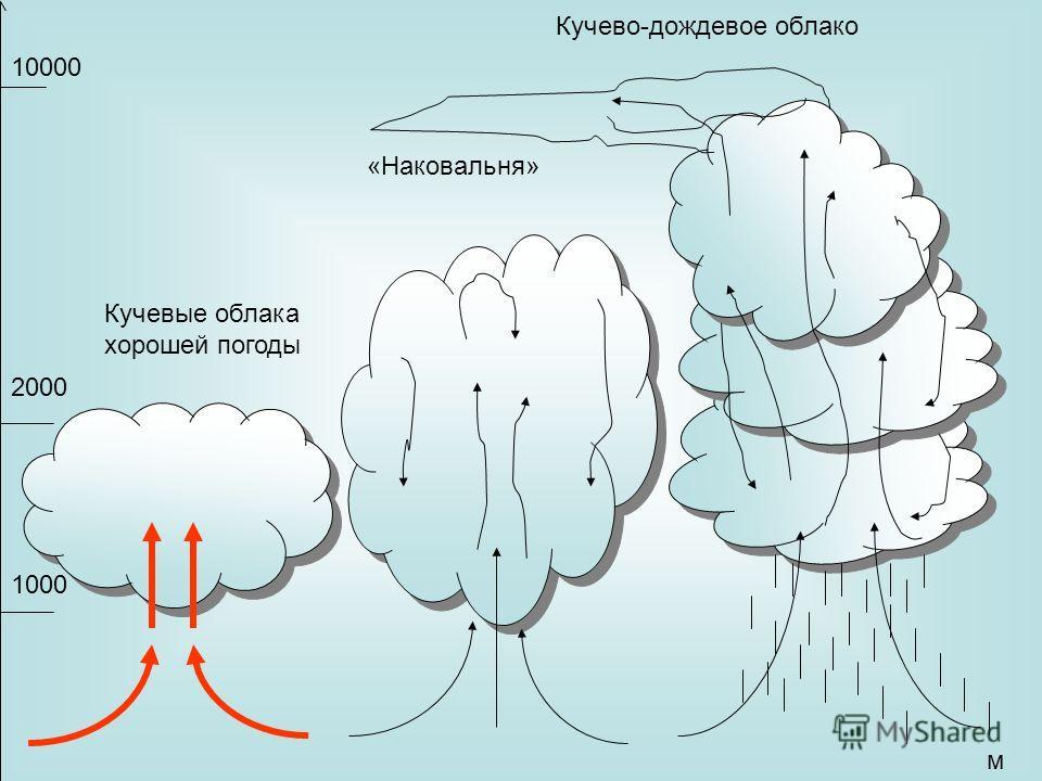 Кучево-дождевое облако «Наковальня» Кучевые облака хорошей погоды 10000 м 1000 2000