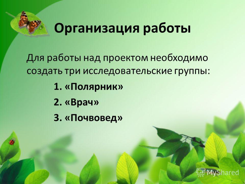 Организация работы Для работы над проектом необходимо создать три исследовательские группы: 1. «Полярник» 2. «Врач» 3. «Почвовед»