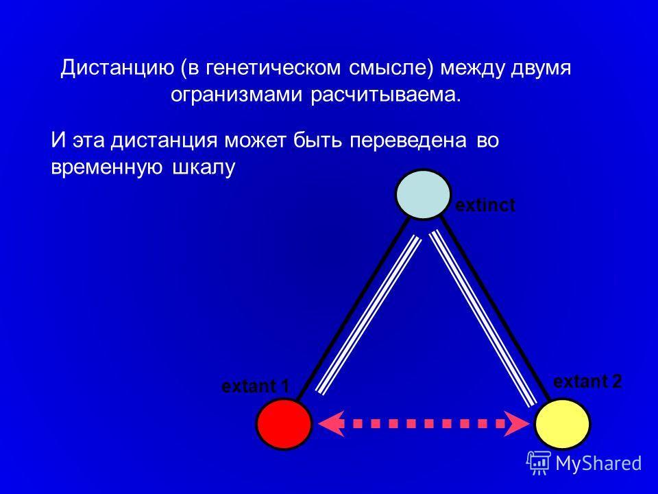 extinct extant 1 extant 2 Дистанцию (в генетическом смысле) между двумя огранизмами расчитываема. И эта дистанция может быть переведена во временную шкалу
