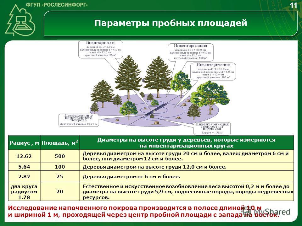 Параметры пробных площадей Исследование напочвенного покрова производится в полосе длиной 10 м и шириной 1 м, проходящей через центр пробной площади с запада на восток. 11 Радиус, мПлощадь, м 2 Диаметры на высоте груди у деревьев, которые измеряются