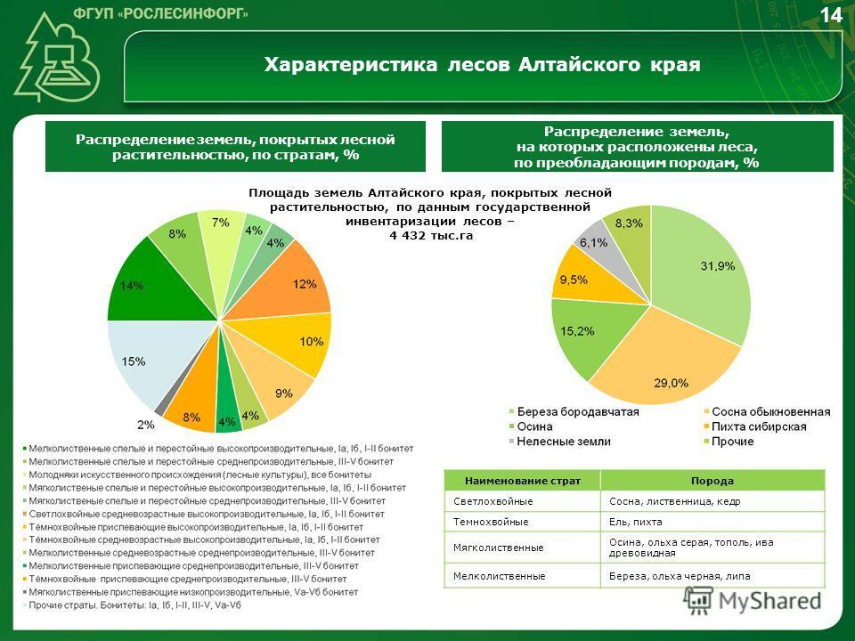 Характеристика лесов Алтайского края 14 Распределение земель, покрытых лесной растительностью, по стратам, % Распределение земель, на которых расположены леса, по преобладающим породам, % Наименование стратПорода СветлохвойныеСосна, лиственница, кедр