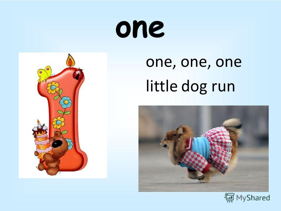 one one, one, one little dog run