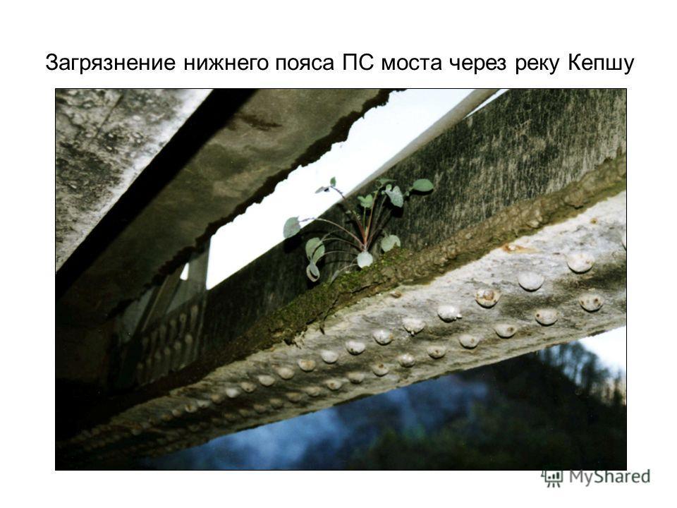 Загрязнение нижнего пояса ПС моста через реку Кепшу