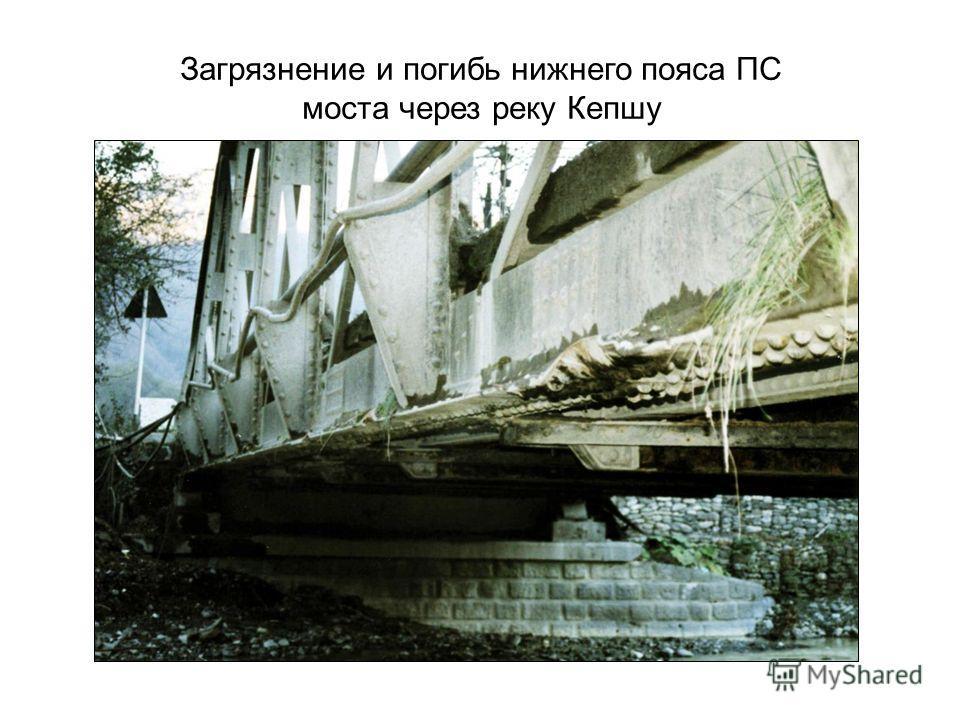 Загрязнение и погибь нижнего пояса ПС моста через реку Кепшу