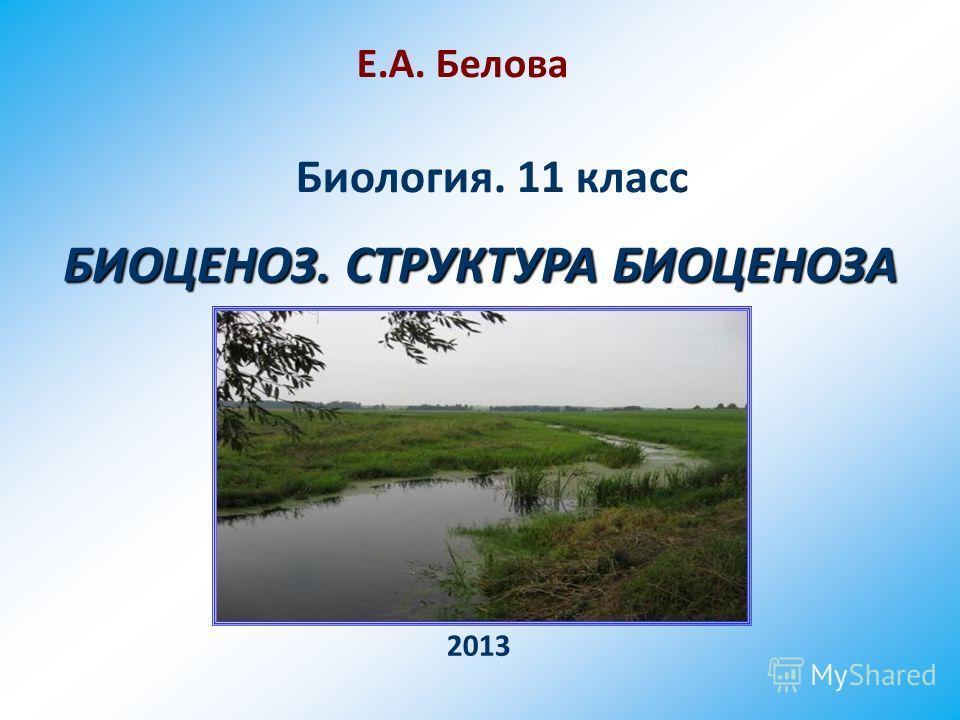 БИОЦЕНОЗ. СТРУКТУРА БИОЦЕНОЗА Биология. 11 класс Е.А. Белова 2013
