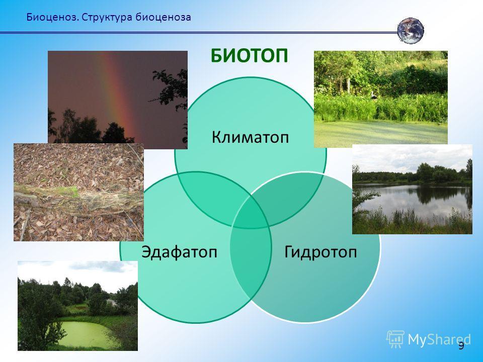 Биоценоз. Структура биоценоза 9 Климатоп ГидротопЭдафатоп БИОТОП