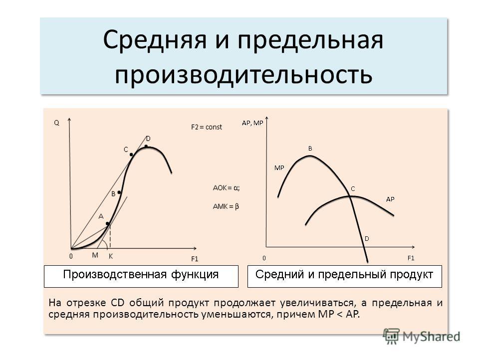 Средняя и предельная производительность На отрезке СD общий продукт продолжает увеличиваться, а предельная и средняя производительность уменьшаются, причем MP < AP.