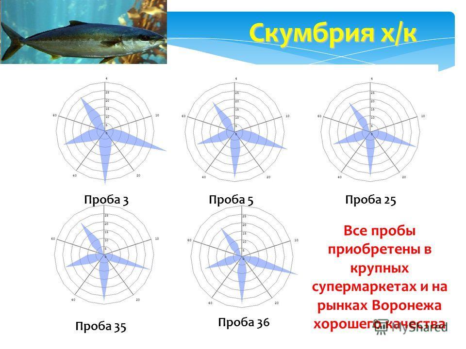 Проба 3Проба 5Проба 25 Проба 35 Проба 36 Скумбрия х/к Все пробы приобретены в крупных супермаркетах и на рынках Воронежа хорошего качества