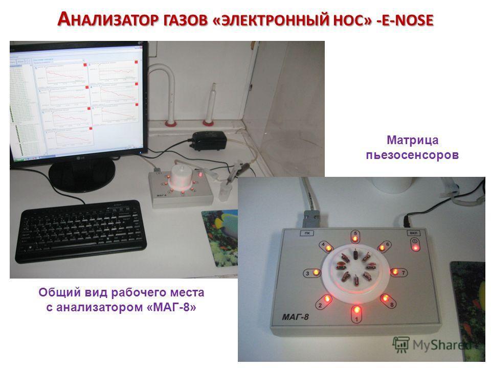 Общий вид рабочего места с анализатором «МАГ-8» Матрица пьезосенсоров А НАЛИЗАТОР ГАЗОВ « ЭЛЕКТРОННЫЙ НОС » -E-NOSE