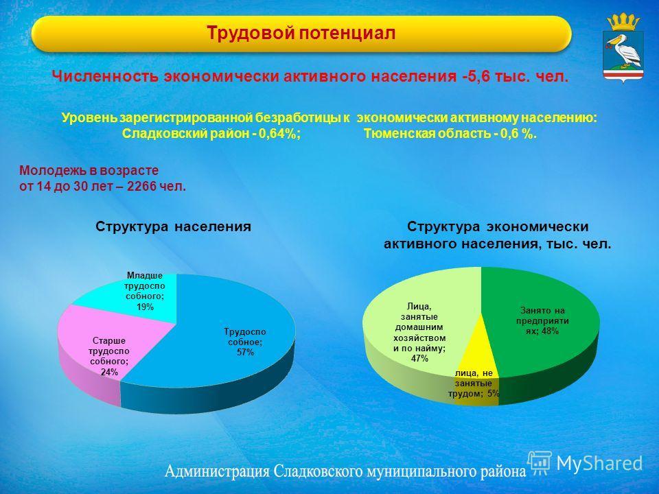 Трудовой потенциал Молодежь в возрасте от 14 до 30 лет – 2266 чел. Уровень зарегистрированной безработицы к экономически активному населению: Сладковский район - 0,64%; Тюменская область - 0,6 %. Численность экономически активного населения -5,6 тыс.
