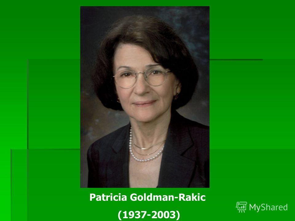 Patricia Goldman-Rakic (1937-2003)
