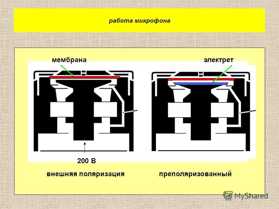 работа микрофона 200 В мембранаэлектрет внешняя поляризацияпреполяризованный
