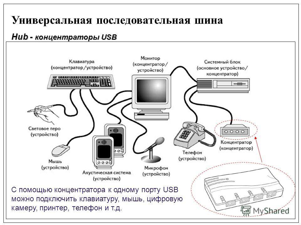 Универсальная последовательная шина Hub - концентраторы USB С помощью концентратора к одному порту USB можно подключить клавиатуру, мышь, цифровую камеру, принтер, телефон и т.д.
