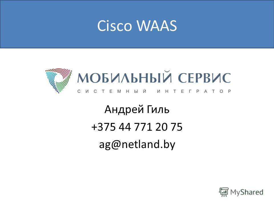 Cisco WAAS Андрей Гиль +375 44 771 20 75 ag@netland.by