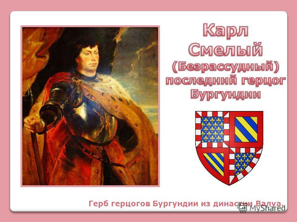 Герб герцогов Бургундии из династии Валуа.
