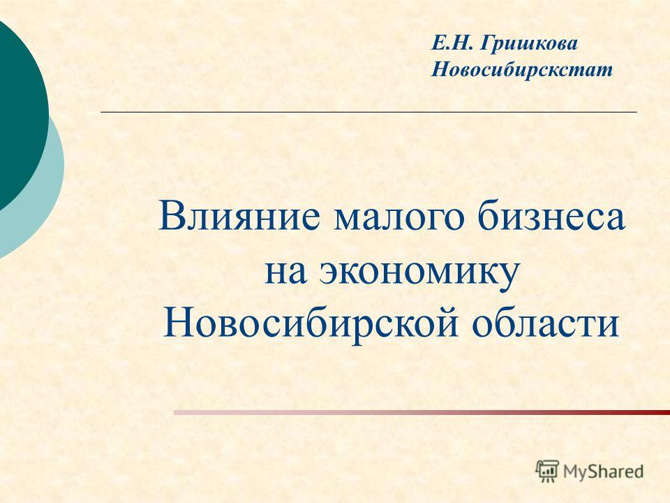 Е.Н. Гришкова Новосибирскстат Влияние малого бизнеса на экономику Новосибирской области