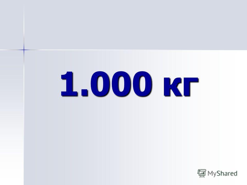 1.000 кг