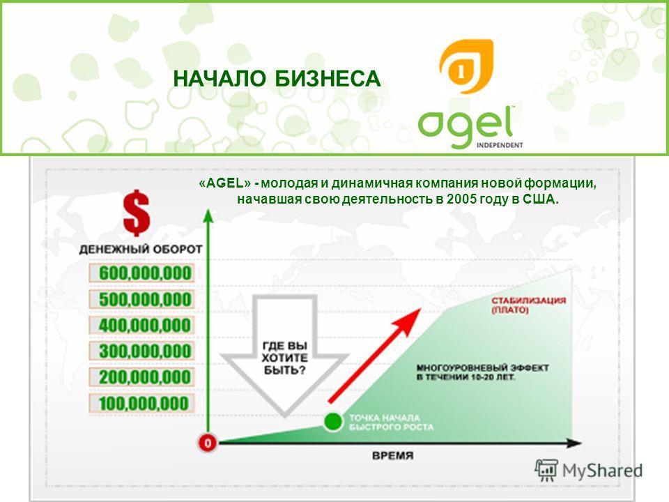 НАЧАЛО БИЗНЕСА «AGEL» - молодая и динамичная компания новой формации, начавшая свою деятельность в 2005 году в США.
