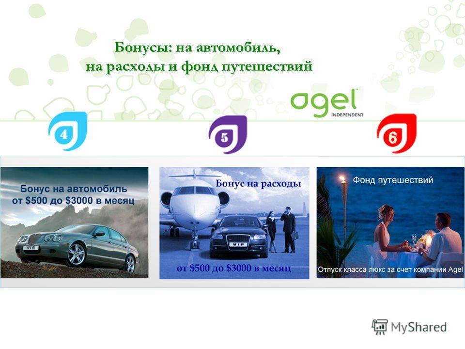 Бонусы: на автомобиль, на расходы и фонд путешествий