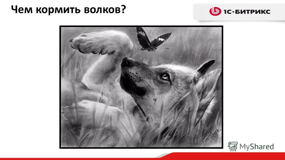 Чем кормить волков?